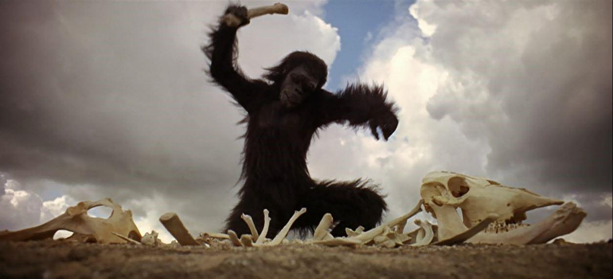 Uomo o bestione Kubrick 2001 Odissea nello spazio